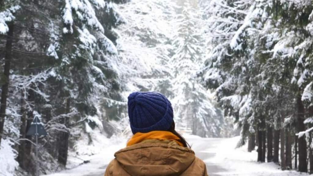 Синоптики рассказали, когда ожидать больших снегопадов
