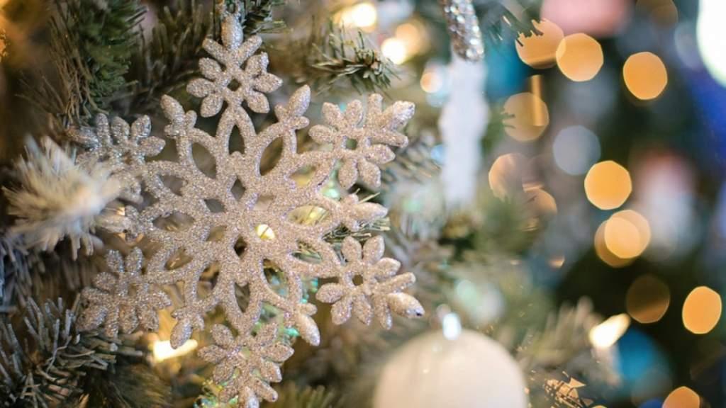 Соотечественники в Канаде провели новогоднюю онлайн-вечеринку