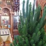 Верующие отметили Рождество в православных храмах Австралии