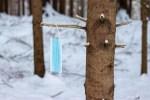 В Эстонии добавилось 787 новых случаев заражения коронавирусом, скончались 10 человек