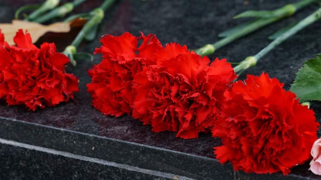 Вандалы повредили памятник советским воинам в латвийском Екабпилсе