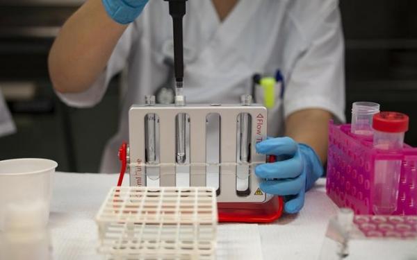 Статистика коронавируса: положительными оказались 1250 тестов из 7031