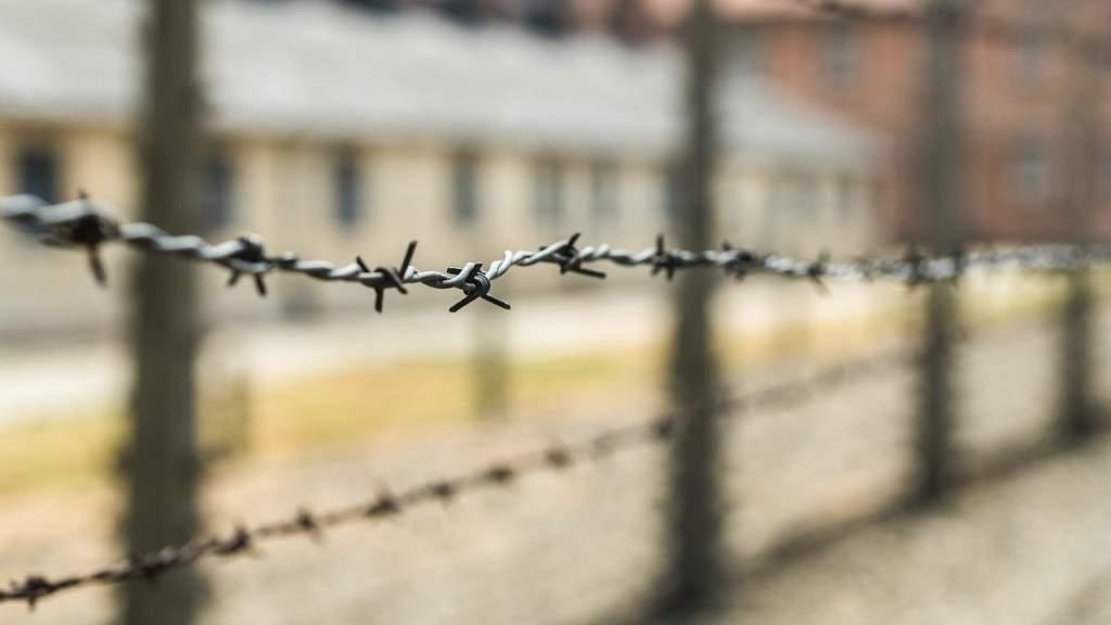 Сборник документов о преступлениях нацистов на территории СССР выложен на портале «Архивы России»