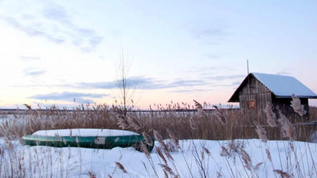 Синоптики: ночью в Латвии ударит мороз до -20 градусов