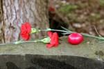 Евгений Капов: соотечественники посетили братские захоронения Принаровья