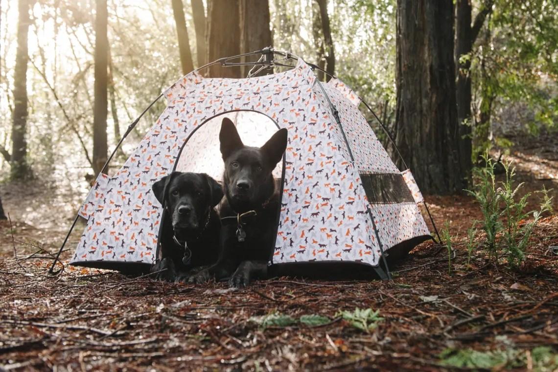 Outdoor Dog Tent
