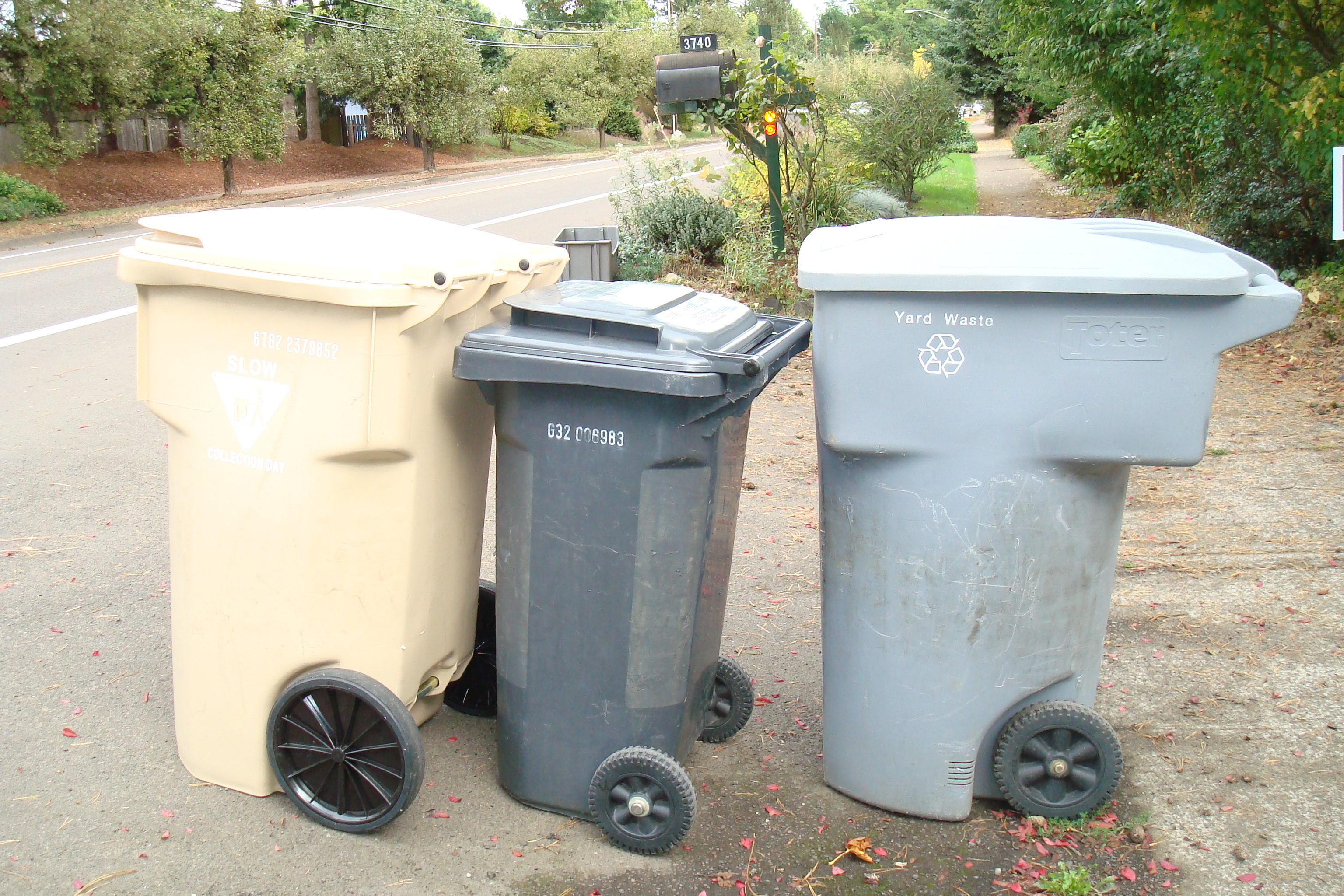 Recycling bin, trash can, yard waste bin at Corvallis curbside (from left to right)