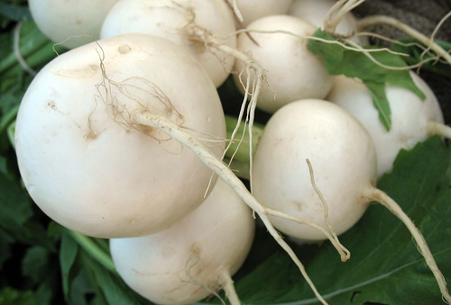 Turnips/Flickr Creative Commons/By michael.newman