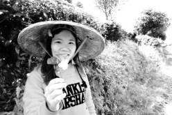 På teplantasje i Yangshuo