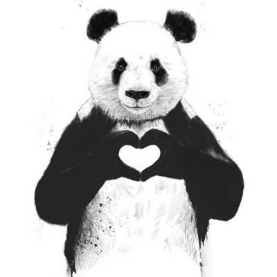 Balazs Solti Panda Print