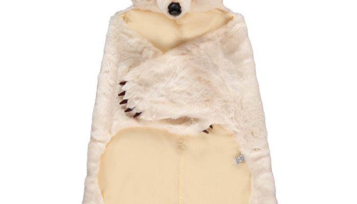 10 best: Polar bears