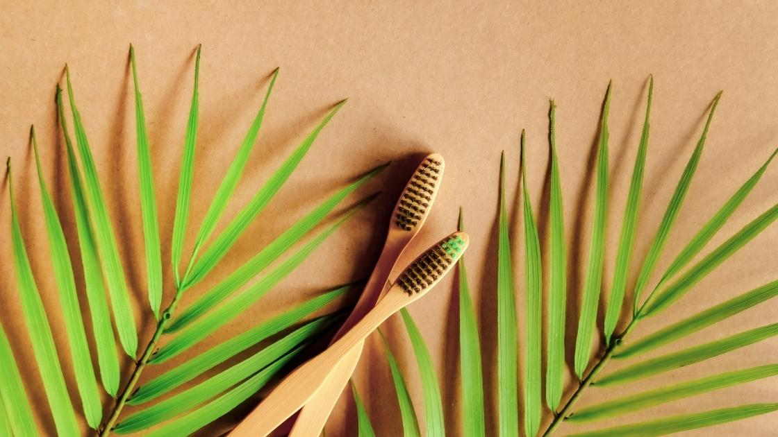 riciclo creativo spazzolino bamboo