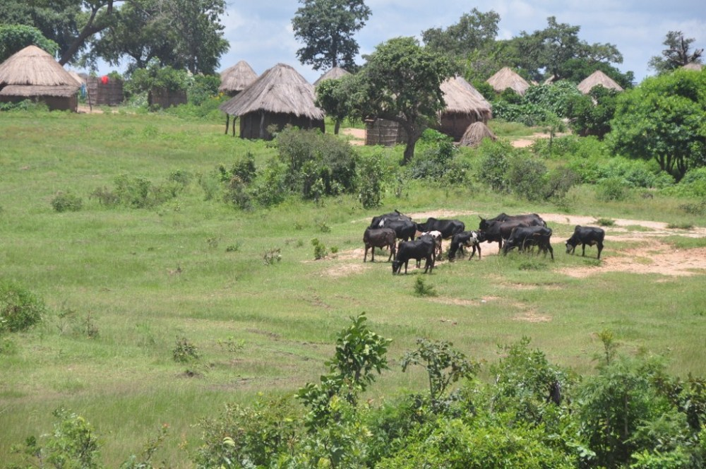 Zambia - The Great East Road Part 1 (4/6)