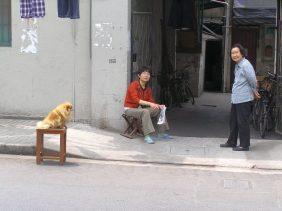 Hongkou: Strassenszene ich Shanghai