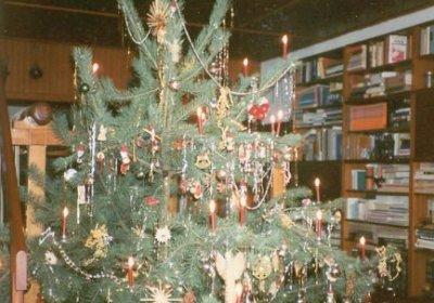 Unser traditioneller Weihnachtsbaum