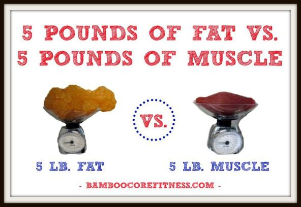 5 pounds of fat vs. 5 pounds of muscle