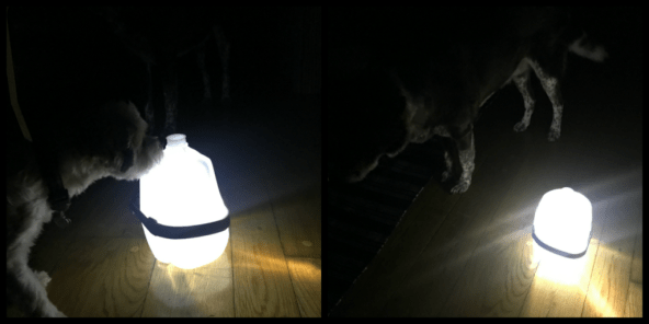 DIY Water jug lantern by Bamboo Core Fitness