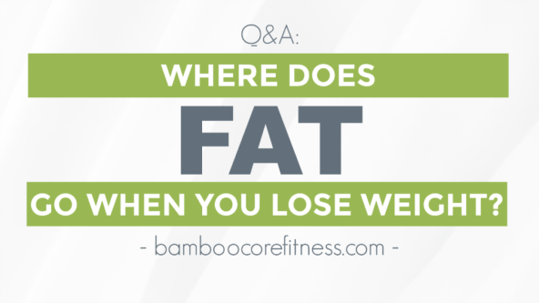 Where does fat go when you lose weight? BambooCore