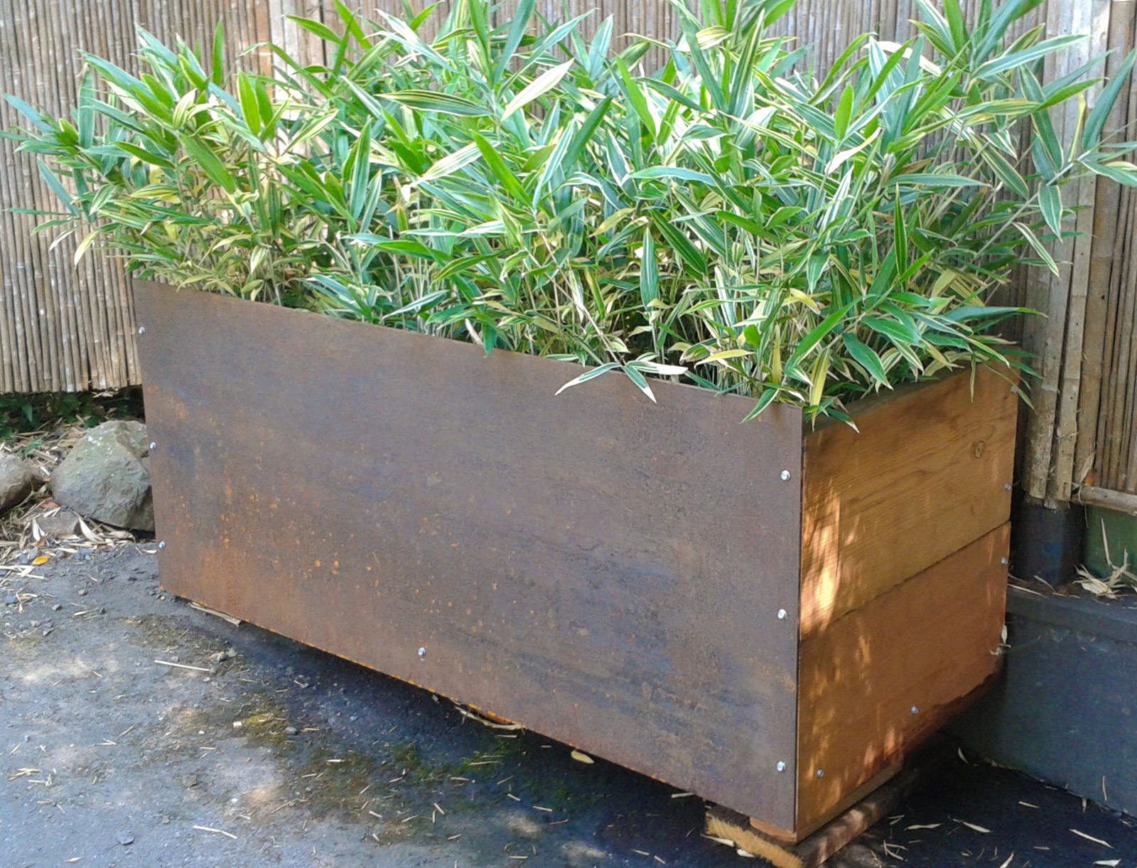 Bamboo Services Bamboo Sourcery Nursery Amp Gardens