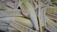 Pousse de bambou: marché alimentaire