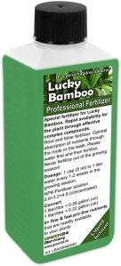 Fertilisant pour lucky bambou
