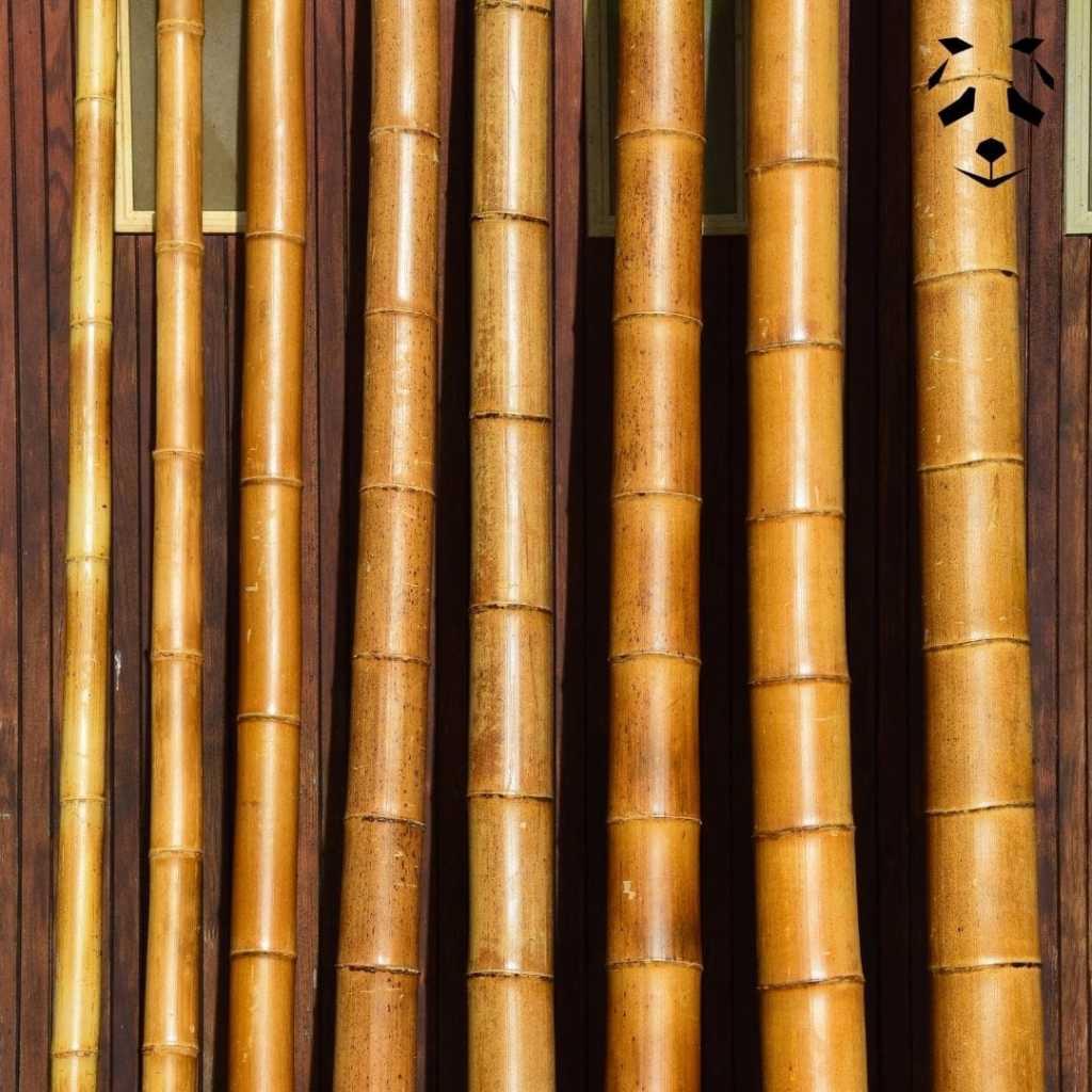 Tronçons de bambou sec de chez Pandam
