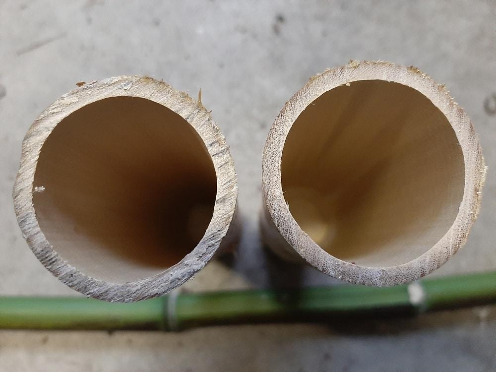 Différences entre la scie japonaise et à métaux pour couper un bambou
