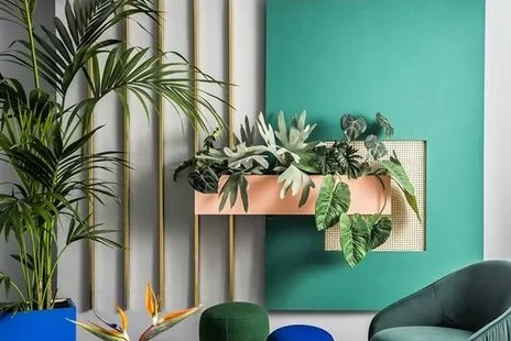 Wakacje w donicy – inspiracje z palmą w mieszkaniu