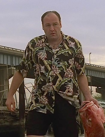 "James Gandolfini as Tony Soprano on The Sopranos (Episode 1.13: ""I Dream of Jeannie Cusamano"")"