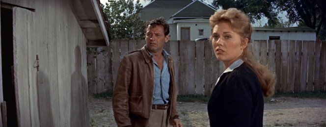Hal and Madge, the morning after they scandalized the town. Kim Novak's signature blonde hair was dyed a more auburn shade for the movie.