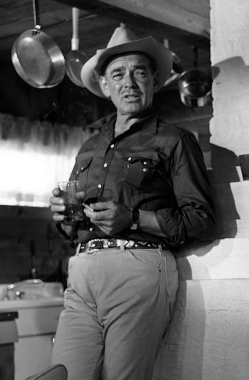 Clark Gable as Gay Langland in The Misfits (1961)