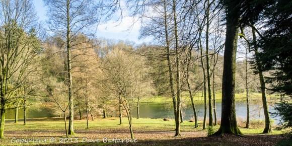Stourhead Lake through the trees.