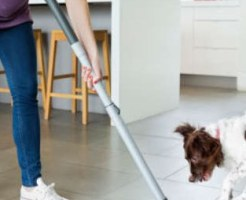 pet-cleaner