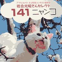 ネコ写真集141ニャンコに選ばれた