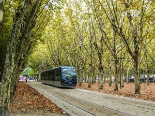 Tram at Quinconces