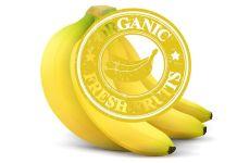 Certificación de Seguridad TR4 para el banano mitiga propagación
