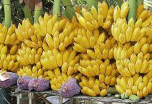 Productores bananeros de Ecuador suspenden huelga