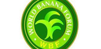 Conferencia del Foro Mundial Bananero se efectuará en el mes de noviembre