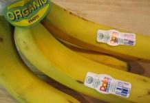 banano orgánico ecuador