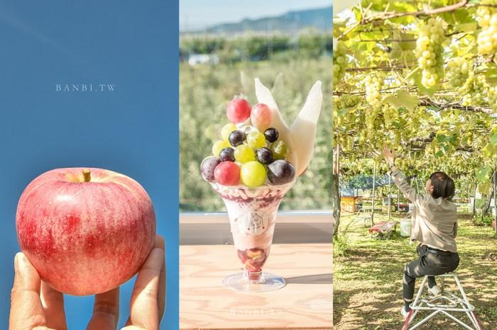 山形景點 王將果樹園採水果:櫻桃、葡萄、水蜜桃30分吃到飽,咖啡館豐盛水果聖代