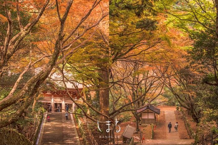 島根景點:鰐淵寺楓葉、絕美紅葉階梯、百年銀杏大樹,到出雲神話秘境賞楓