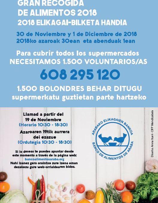 NECESITAMOS VOLUNTARIOS/AS PARA LA GRAN RECOGIDA