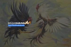 Teaser Web Sabung Ayam Online