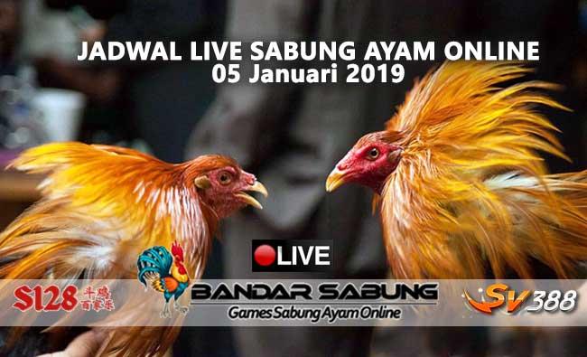 jadwal sabung ayam online s128 dan sv388 05 januari 2019