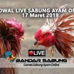 Jadwal Sabung Ayam Online S128 Dan SV388 17 Maret 2019
