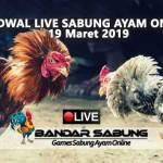 Jadwal Sabung Ayam Online S128 Dan SV388 19 Maret 2019