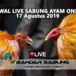 Jadwal Sabung Ayam Online S128 Dan SV388 17 Agustus 2019