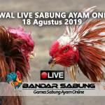 Jadwal Sabung Ayam Online S128 Dan SV388 18 Agustus 2019