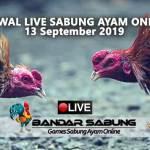 Jadwal Sabung Ayam Online S128 Dan SV388 13 September 2019