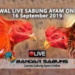 Jadwal Sabung Ayam Online S128 Dan SV388 16 September 2019